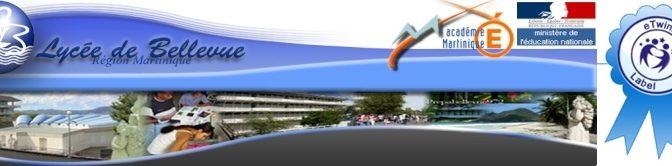 Le LGT Bellevue obtient les labels de qualité eTwinning